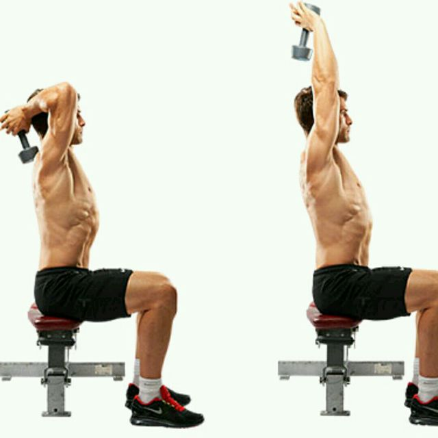 Single Arm Dumbell Bench Press: Seated Triceps Press Extension