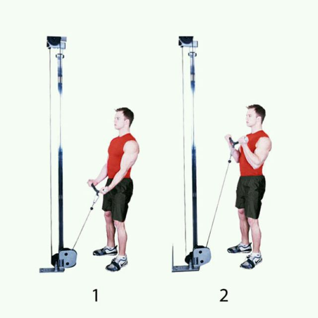 How to do: Standing Biceps Cabel Curl - Step 1