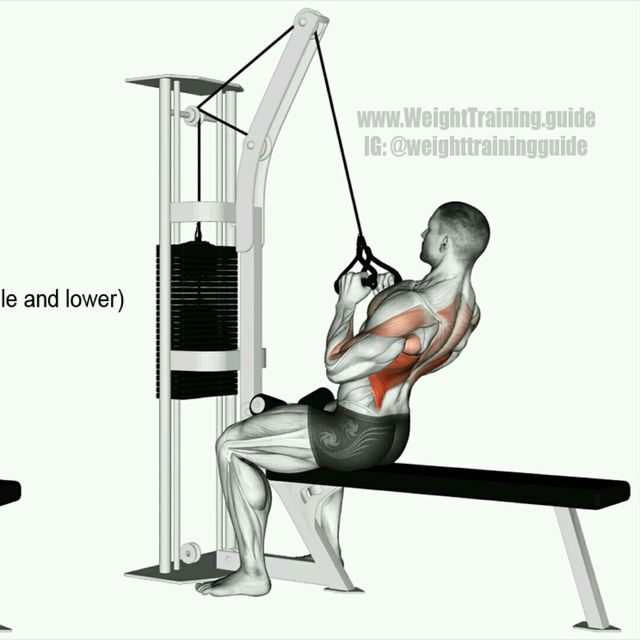 How to do: Neutral Grip Lat Pull-down - Step 2