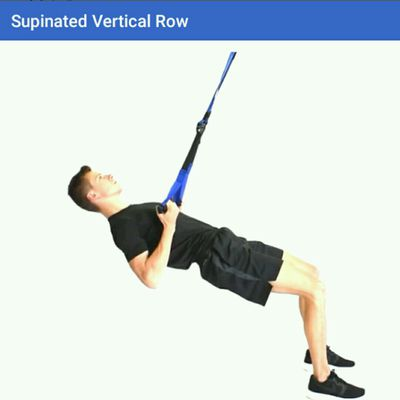 Supinated Vertical Row
