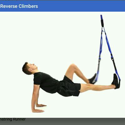 Reverse Climbers TRX
