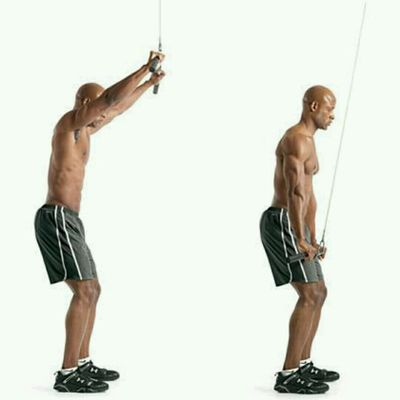 Straight Arm Cable Pull downs
