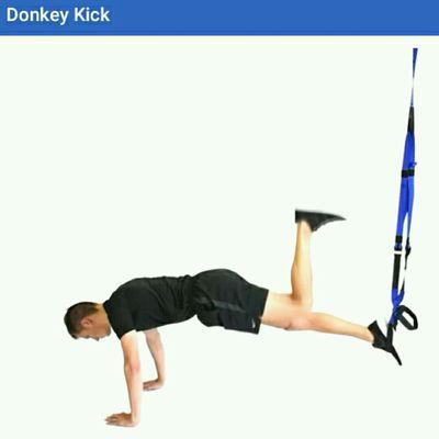 Donkey Kick TRX