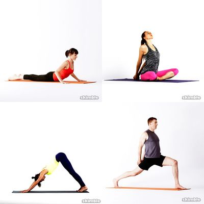 Yoga Favorites