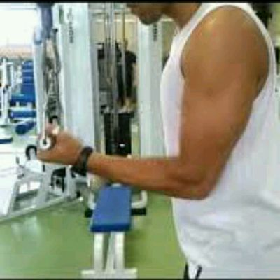 Triceps Invertido
