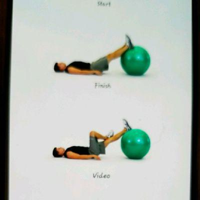 Hip Rotator With Ball