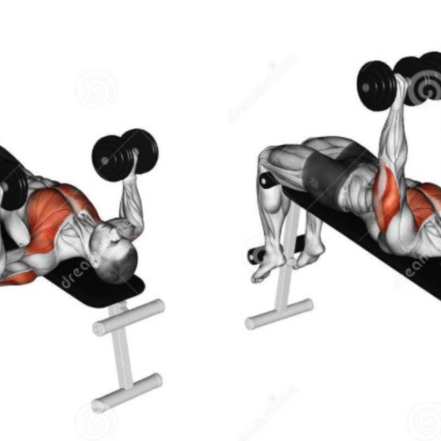 Single Arm Dumbell Bench Press: Decline Barbell Bench Press