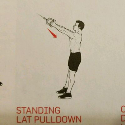 Standing Lat Pulldown