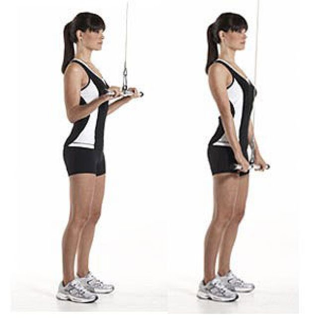 Cable Tricep Extension - Exercise How-to - Workout Trainer ...