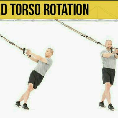Resisted Torso Rotation