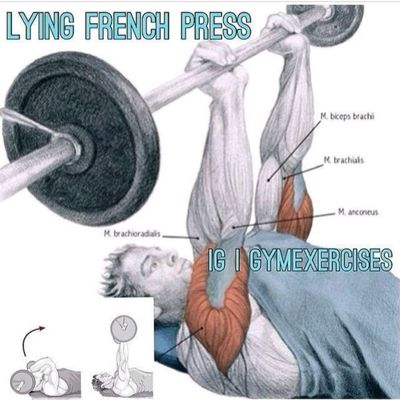 Lying French Press