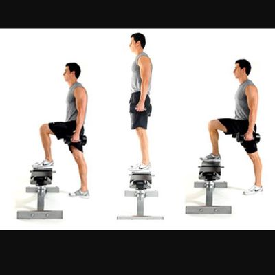 Bench Step Up Left Leg