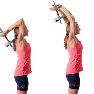 Prsia biceps triceps