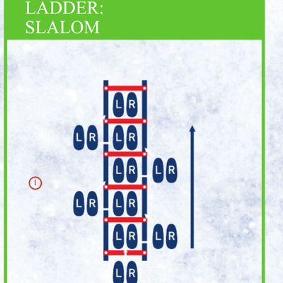 Ladder Slalom