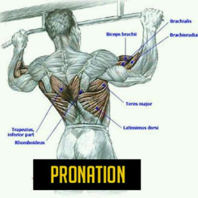 Tractions Pronation