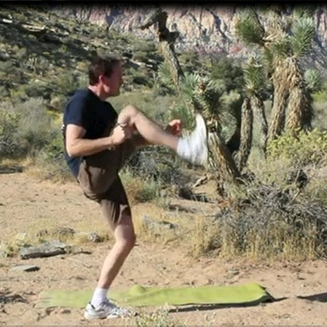 How to do: Rear Lunge/Rear Lunge To Knee Scorpion - Step 7