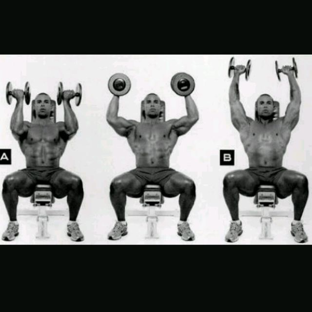 How to do: Seated Dumbbell Arnold Press - Step 1