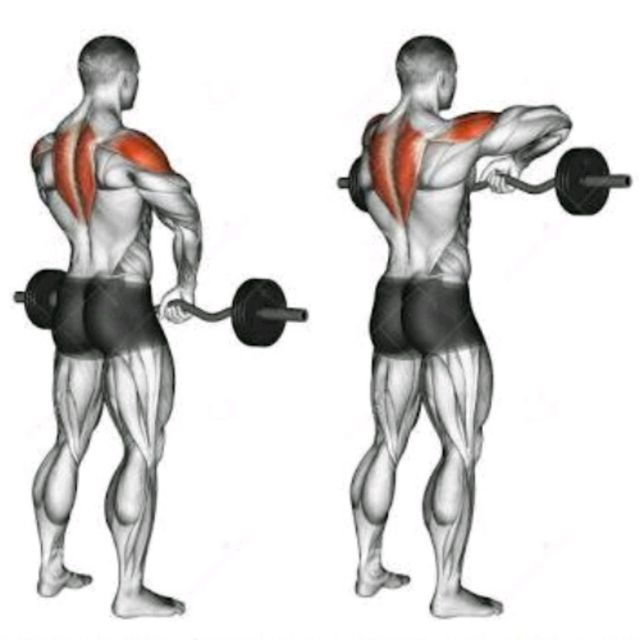 How to do: Barbell Upright Rows - Step 1