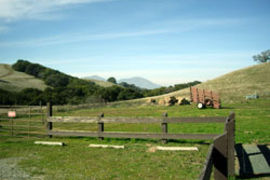 Morgan Territory Regional Preserve, California, United States