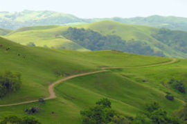 Sunol Regional Wilderness, California, United States