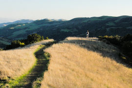 Las Trampas Regional Wilderness, California, United States