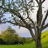 Garin_regional_park_thumb