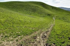 Briones Regional Park, California, United States