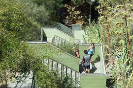 Jacobs Ladder, Kings Park, Western Australia, Australia