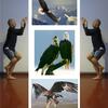 Eagle_pose_thumb