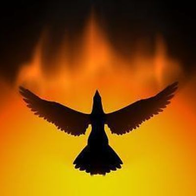 Phoenixbirdphoto_full