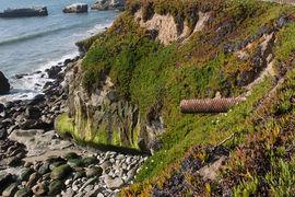 West Cliff, Santa Cruz, California, United States