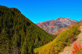 American Fork Canyon, Utah, United States