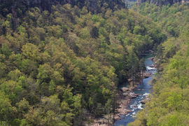 Little River Canyon National Preserve, Alabama, United States