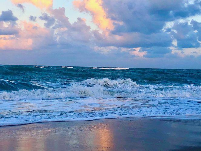 Windy_beach_large