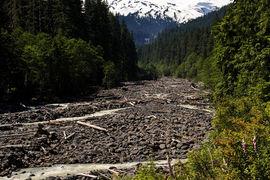 Mt Baker - Snoqualmie National Forest, Washington, United States
