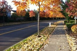 Auburn, Washington, United States