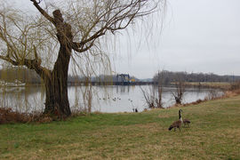 Anacostia Park, Washington, DC, United States