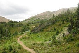 Jasper Skyline Hike, Canada
