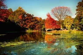 Prospect Park, New York, United States