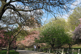 New York - Riverside Park, New York, United States