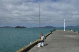 Petone Beach, New Zealand