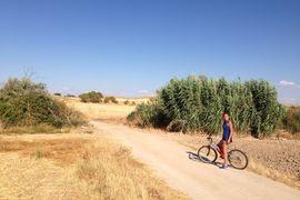 Mostoles, Spain