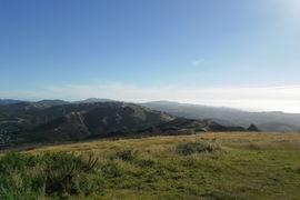 Khandaliah Reserve, New Zealand