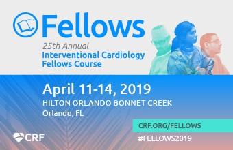 Fellows 2019