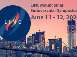 LINC Mount Sinai 2020