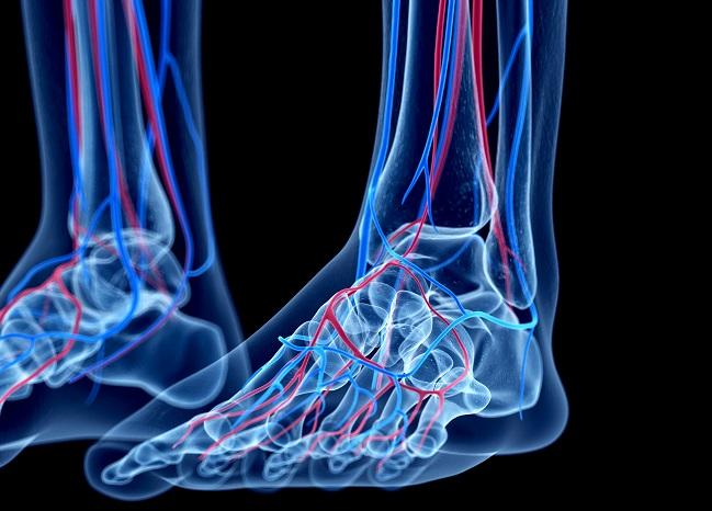 Low Ankle-Brachial Index a Harbinger of Poor Physical QoL and Lack of Mental Vitality