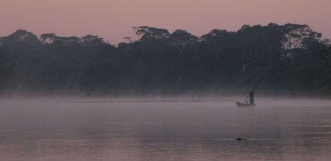 People Living in Amazon Rainforest Provide Clues to Coronary Protection