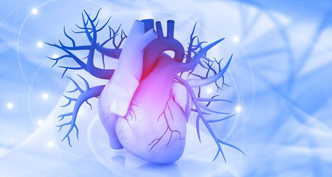 Score May Ease Risk Stratification in Acute MI-Related Cardiogenic Shock