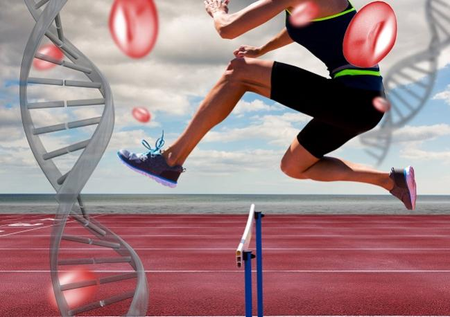 Outrunning Your Genes: Exercise Offsets CVD Events Among High-Risk Subjects