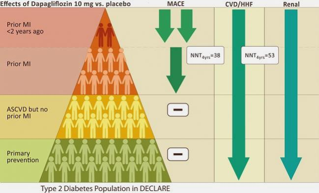 New DECLARE-TIMI 58 Data Shine a Light on Diabetes Patients Most Likely to Benefit From Dapagliflozin